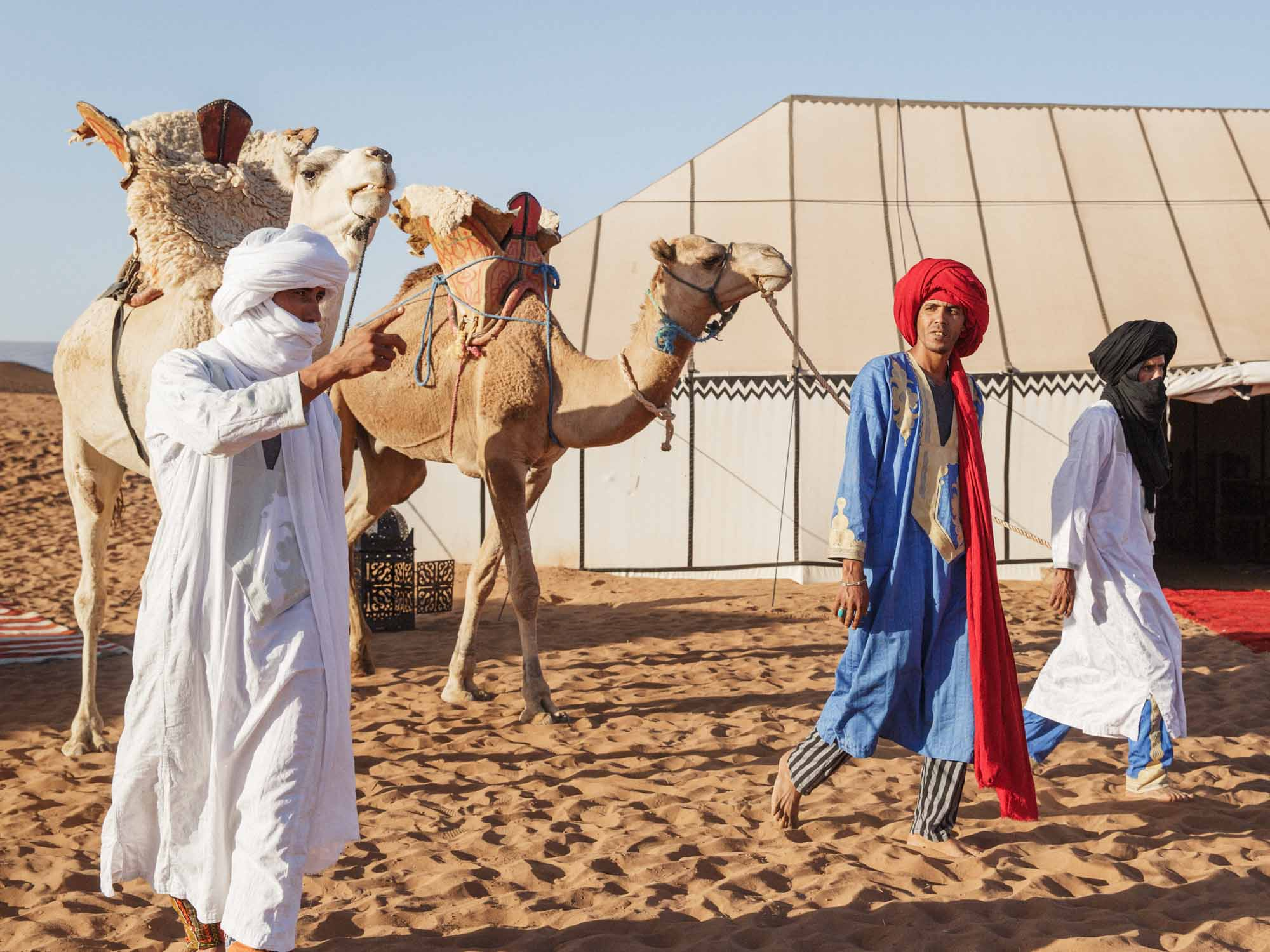 Three Berber Tour Guides With Camels Saddled up at Moroccan Desert Camp