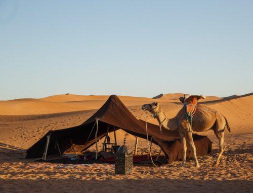 Nomadic Luxury in the Sahara