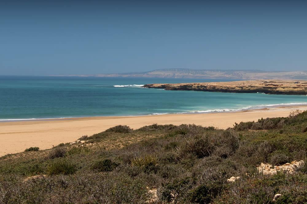 Sahara to the Sea