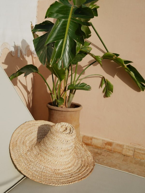 Large Brimmed Straw Hat next to Moroccan Potted Broad Leaf Sub-Tropical Plant