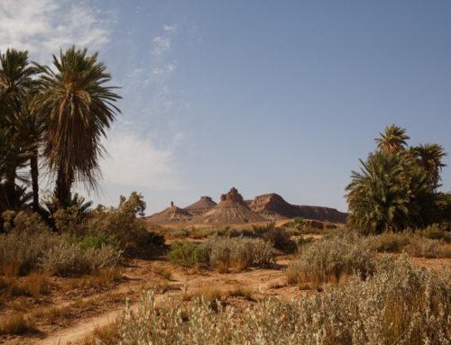 The Morocco Garmin Titan Desert Cycle Race
