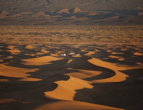 How to Choose your Sahara Desert Camp