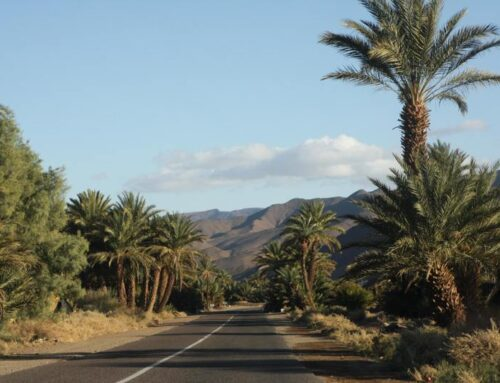 Moroccan Landscapes & Highlights